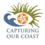 Capturing Our Coast